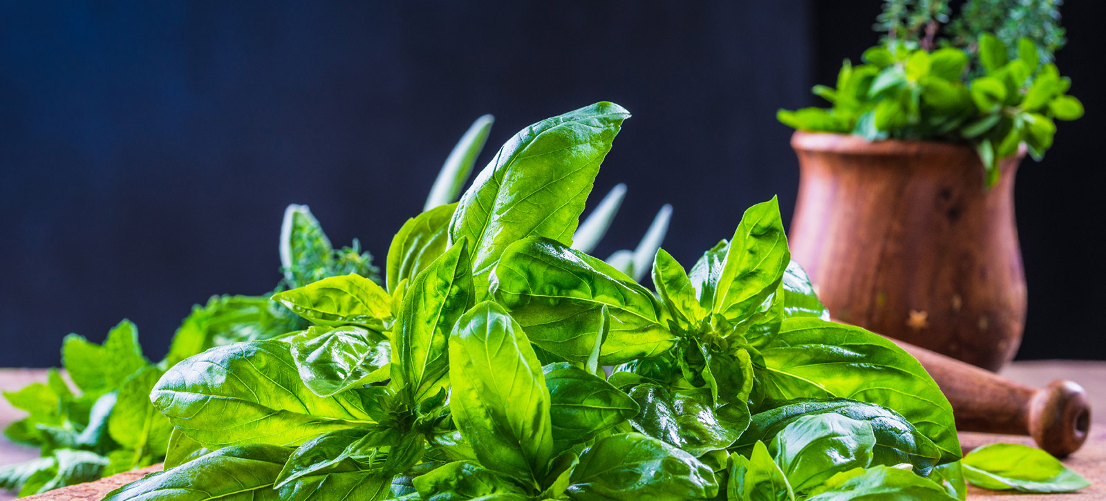 Stock These 4 Herbs For Delicious Italian Cooking